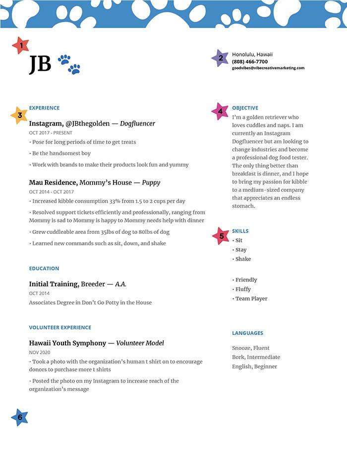 JB the golden's resume