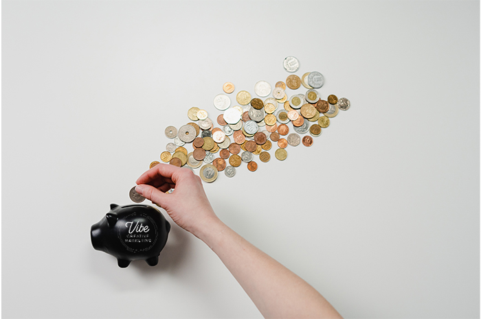 Vibe Piggy bank with coins